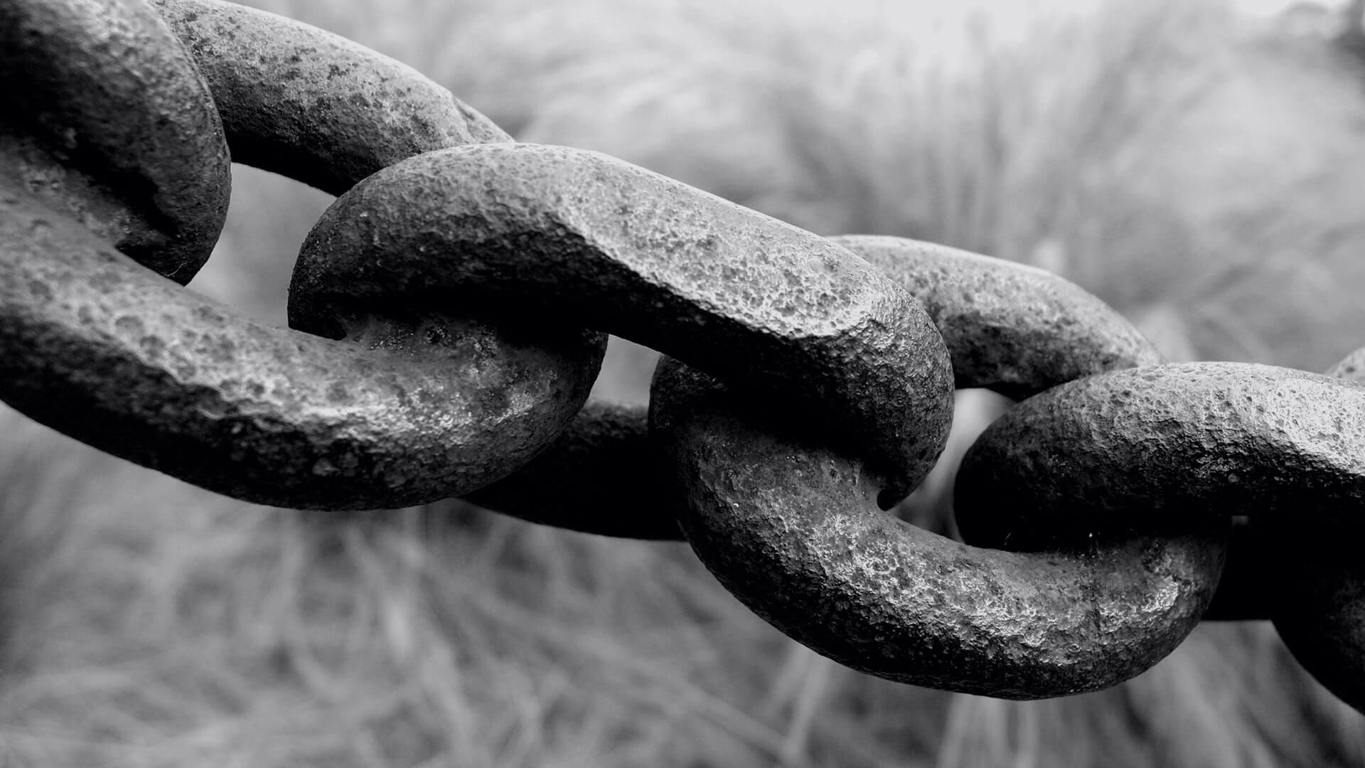 9 sự thật phũ phàng về link trong SEO