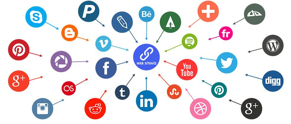 Các loại backlink trong seo & Reciprocal Link là gì?