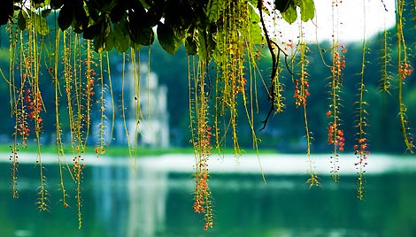 Thiết kế web quận Hoàn Kiếm | DỊCH VỤ THIẾT KẾ WEB QUẬN HOÀN KIẾM