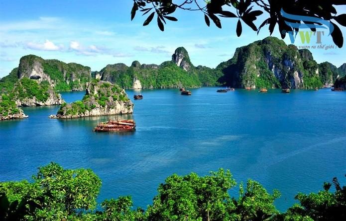 Thiết kế web tại Quảng Ninh | DỊCH VỤ THIẾT KẾ WEB TẠI QUẢNG NINH
